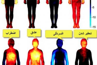 ارتباط احساسات و اندامها